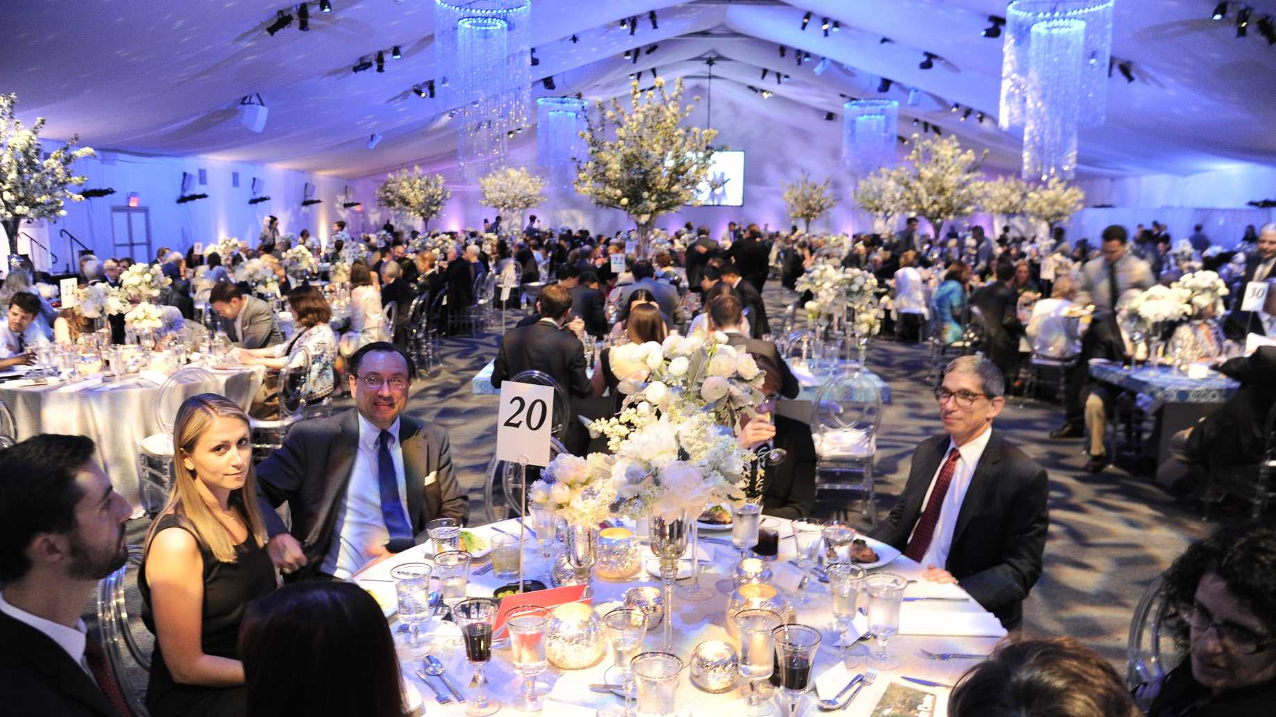 Galas Support Lincoln Center